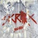 Skrillex -  Bangarang  (Noizekid & Addictiv Moombahton Edit)