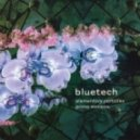 Bluetech - Triangle (Retriangulated)