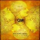 Zabini & Palmas - Waking Mind (Mend Remix)