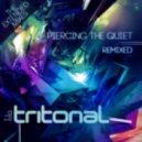 Tritonal feat. Meredith Call - Broken Down (Daniel Kandi's Bangin Remix)