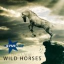 Donati And Amato - Wild Horses (Original Mix)