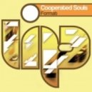 Cooperated Souls - Format (Edy Whiskey Deejay Mashup)