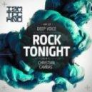 Deep Voice - Rock Tonight (Christian Cambas Remix)