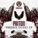 Paiton - Warp (Original Mix)