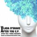 Vlada D'shake - After You (Original Mix)