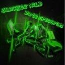 Sanchez Wild, Dirty Spectrum - Razer (Original Mix)