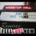 Jesus Luz, Miss Palmer - Feel Love Now (Ronen Dahan And Irad Brant Remix)