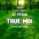 DJ Pitkin - I Feel The Music (Club Mix)