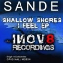 Sande - I Feel (Moein Remix)