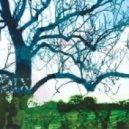 Banco De Gaia - Wimble Toot (100th Monkey Remix)