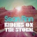 Sean Finn - Riders On The Storm (Robert Naiphe Remix Edit)