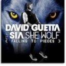 David Guetta   - She Wolf (Argonizing Sound and DJ Jereme Remix)