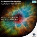 Napalm & D-Phrag - Fluctuation