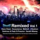 Dave Shichman - 5th Sentence (DuoScience Remix)