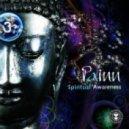 Painn - Quantum Hallucination