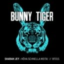 Sharam Jey - Hoha Schnella Weita!  (Original Mix)