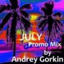 Dj Andrey Gorkin - July Promo Mix 2013