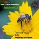 Stan Kolev & Juan Mejia - Ambrosia (Sebastian Davidson Remix)