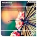 Plicherss  - Don't Stop The Rhythm (Original Mix).