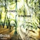 K-Chaos - In the Woods