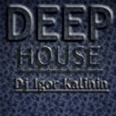 Dj Igor Kalinin - Deep House Mix #2
