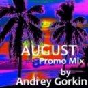 Dj Andrey Gorkin - August Promo Mix 2013