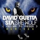 David Guetta feat. Sia  - She Wolf (Duo Yad Remix)