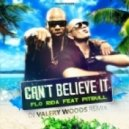 Flo Rida feat. Pitbull - Can't Believe It (Dj Valery Woods Remix)