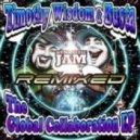 Timothy Wisdom & Busta  -  Pound For Pound (JPOD Remix)