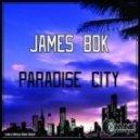James Bok - Detroit Sex Machine (Original Mix)