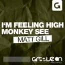 Matt Gill - Im Feeling High (Original Mix)