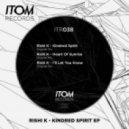 Rishi K. - Kindred Spirit (Original Mix)