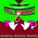 Laidback Luke feat. Jonathan Mendelsohn - Till Tonight (Andrey Gorkin Remix)