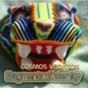 Cosmos Vibration - The Dome (Original Mix)