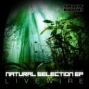 Livewire - Natural Selection