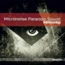 Nancy Sinatra - Shoot You Down (Micronoise Paranoic Sound Remix)