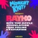 Rayko - Stimulation (Original Mix)