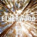 Etherwood - Shattered (feat. Nu:Tone)