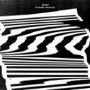 Pional - Invisible/ Amenaza (Original Mix)