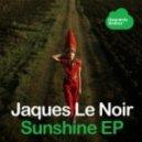 Jaques Le Noir - Come Back (Original Mix)