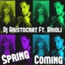 Dj Aristocrat ft. Brioli - Spring Coming (Bare B Remix) (Spring Coming)