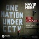 Navid Mehr - Sungazer (Original Mix)