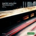 Dmitry Molosh - Tranquility (Original Mix)