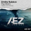 Dmitriy Bulakov - The Storm (Original Mix)