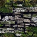 Sean Danke - Different Vibes (Yagya Remix)