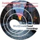 Funkhameleon -   Win You Back  (Original mix)