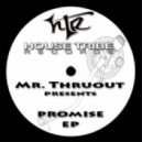 Mr. Thruout - Touch Me