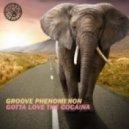 Groove Phenomenon - Gotta Love The Cocaina (Original Mix)