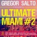 Gregor Salto & Genairo Nvilla - Riddim Go (Original Mix)