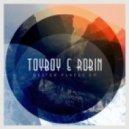 Toyboy & Robin feat. Nikki Cislyn - Back & Forth (Original mix)